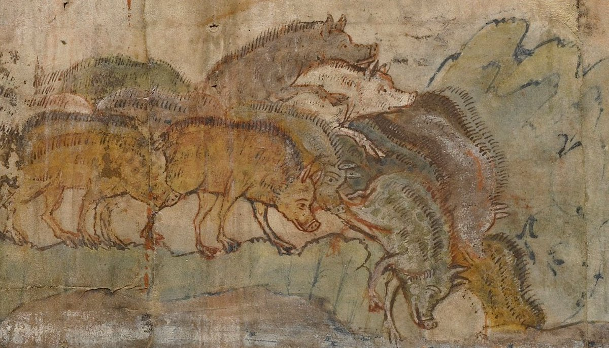 gadarene-swine